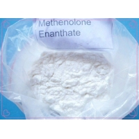 China White Power Methenolone Enanthate CAS 303-42-4 Raw Steroid Powders For Body Building wholesale