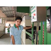 China Full Automatic Pulp Molding Machine Industrial Packaging Tray Machine PLC Control wholesale