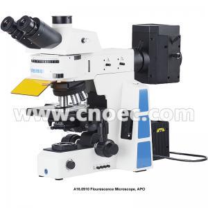China Trinocular Infinity Optical Fluorescence Microscope With Halogen Lamp wholesale
