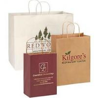 China Logo Custom Printed Paper Bags , Reusable Paper Shopping Bag with Handle wholesale