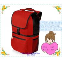 China Picnic Insulated Cooler Backpack /outdoor travelling picnic cooler backpack wholesale