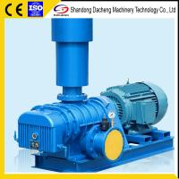 China DSR-V Roots Vacuum Blower wholesale