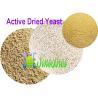China 2 Billion cfu/g Granulated Dry Active Yeast Livestock Feed Additives SYE-AD2BI wholesale