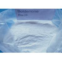 TopQuality Steroid Boldenone Base For Muscle Growth / Boldenone Powder