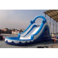 China Huge Dolphin Inflatable Water Slide Combo , Backyard Water Slides For Adults wholesale
