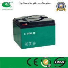 China 12V30ah AGM Battery/Lead Acid Battery/Gel Battery/Deep Cycle Battery wholesale