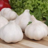 China High-quality white garlic from China is a hot seller,cheap,logistics is fast wholesale