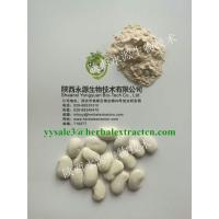 China White Kidney Bean Extract, Extrato de Feijão Branco,3000 Unit/g, 1%Phaseolamin,manufacturer wholesale