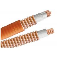 China Light Load Multicore High Temperature Cable BTTW 500V BS IEC Certification wholesale