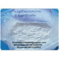 China 98% High Purity Primobolan Methenolone Enanthate 303-42-4 for Muscle Building on sale