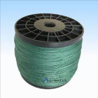 China Spectra Fishing Line, Fishing Tackle (200LB) on sale
