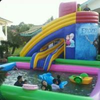 China used inflatable water slide for sale wholesale