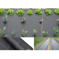 China Moisture PP Agriculture Non Woven Fabric For Garden Weed Control 50gsm - 70gsm wholesale