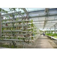 China Plastic Film Low Cost Greenhouse , Hydroponic Plastic Greenhouse Accessible To Remove wholesale