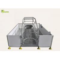 China Good Warming PVC Board Hog Farrowing Cage Automatic Piglet Nursery Stall Pen wholesale