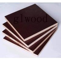 China Hardwood Film faced Shuttering plywood panels board concrete wholesale