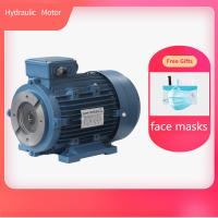 China Hollow Shaft Hydraulic Electric Motor Aluminum Housing With Free Gifts Face Mask wholesale