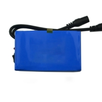 China IEC62133 12V 2500mAh Lithium Ion Polymer Battery Pack wholesale