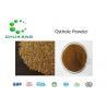 China HighPurity Fructus Cnidii Extract Powder CAS 484 12 8 Osthole PurityPowder wholesale