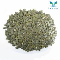 China GWS Pumpkin Seed Kernel wholesale