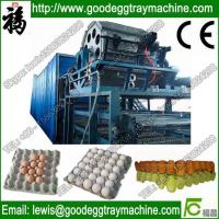 China Paper Pulp Moulding Machine on sale