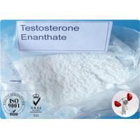 China Bodybuilding Testosterone Steroid Hormone Testosterone Enanthate for Muscle Growth wholesale