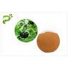 China Siberian Ginseng Powdered Herbal Extracts Acanthopanax Senticosus Eleutheroside B/E wholesale