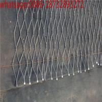 China flexible steel mesh/stainless cable/mesh cable tray/steel netting/steel cable mesh/wire rope thimble/rope mesh wholesale