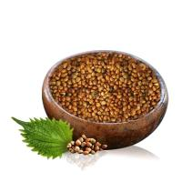 China Anti - Aging Plant Essential Oils Herbal Medicine And Food Perilla Seed Oil on sale