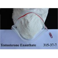 China Injectable Testosterone Enanthate Muscle Building 315-37-7 wholesale