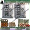 China Egg Box/Carton pulp mould/mold wholesale
