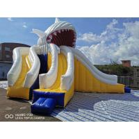 China Giant Shark Commercial Inflatable Water Slides / Triple Lanes Adults Water Slide wholesale