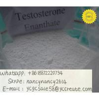 China Raw anabolic Hormone Powders Enanthate Testosterone Anabolic Steroid  315-37-7 test e fast growth muscle wholesale