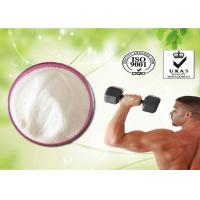 China Raw Steroids Testosterone undecanoate CAS NO.5949-44-0 for Bodybuilding wholesale