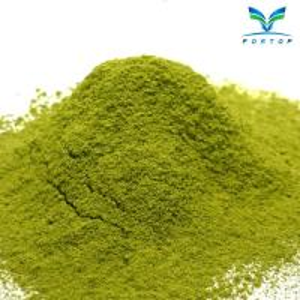 China Tikuanyin Tea Powder wholesale