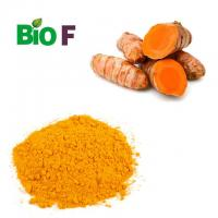 China Organic Animal Feed Additive Turmeric Extract Powder 99% Curcumin wholesale