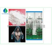 China Anti Estrogen Steroids Bodybuilding Testosterone Propionate Injection / Oral wholesale