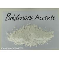 China Legal Anabolic Steroids Boldenone Acetate 99% High purity for man muscle gain wholesale