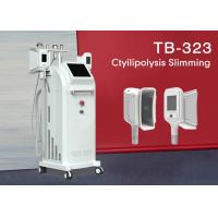China Fat Freeze Cryolipolysis Slimming Machine 4 Handles Belly Fat Removal Machine 1800W wholesale