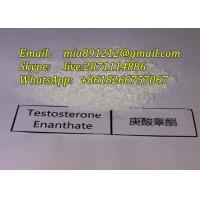 China Muscle Gain Steroid Testosterone Enanthate Powder Test E 99.9% High Purity Test Steroid white powder Test e CAS315377 wholesale
