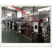 China China 2-6 ingridents plastic batch gravimetric blender/Digital Gravimetric Blender wholesale