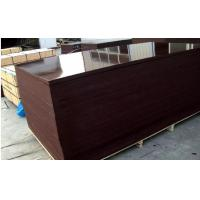 China Brown Phenolic Film Faced Plywood Board water-proof wholesale