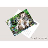 China Durable Animal Theme OEM 3D Lenticular Postcard / Gift Card Printing wholesale