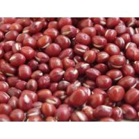 China manufacturer Red adzuki bean extract, Red Bean Extract 10:1 TLC, Red Bean Powder, Chinese manufacturer wholesale