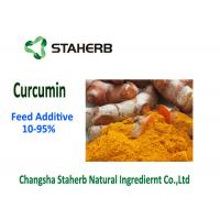 China Raw Material Phytogenic Feed Additives , Turmeric Curcumin Powder 10-95% Purity on sale