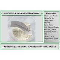 Raw Testosterone Enanthate Powder , Test Enanthate Muscle Building Steroids CAS