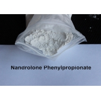 China Natural Deca Durabolin Steroids Nandrolone Phenylpropionate NPP For Mass Muscle Growth wholesale