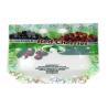 China Ziplock Fresh Fruit Packaging Bag Stand Up Custom Printed With Euro Hole / Zipper wholesale