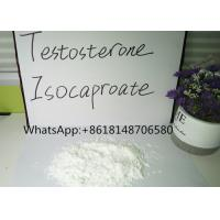China Testosterone Raw Powder Isocaproate Bodybuilding Test ISO Steroid Pass Customs wholesale