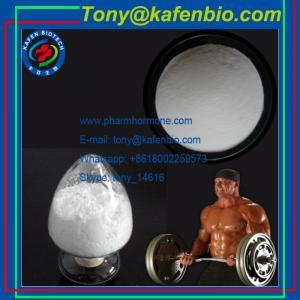 China Anabolic Steroids Powder Anabolic Trenbolone Steroids Powder 23454-33-3 Trenbolone Hexahydrobenzyl Carbonate wholesale